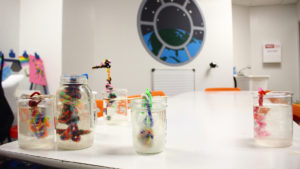 Crystalization Experiment: colorful wire pipe cleaners hang inside glass beakers filled with a liquid solution to support crystal growth.