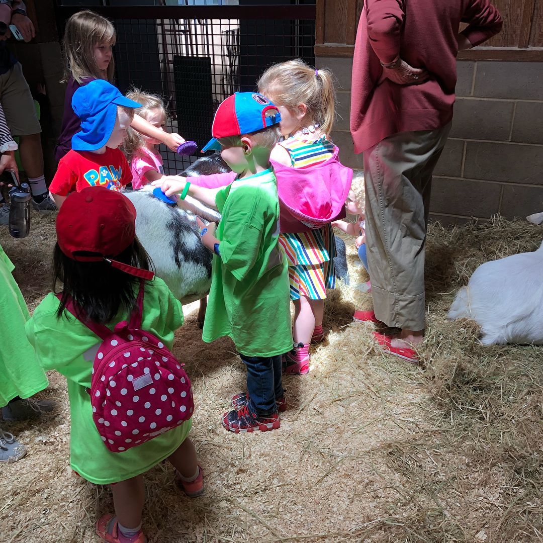 Summer campers from Panache Enfants and Panache Academie enjoyed meeting the animals on our annual field trip to the Oakland Zoo.